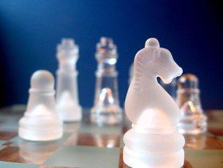 skak-springer